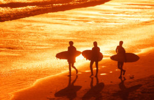 Beach Surfers in Galveston during sunset